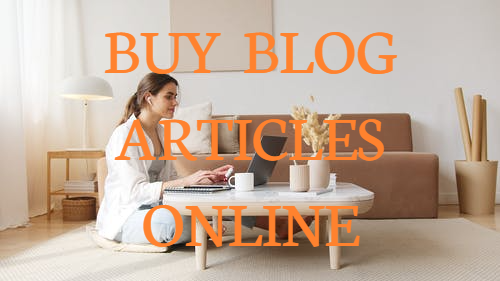 buy seo blog articles online